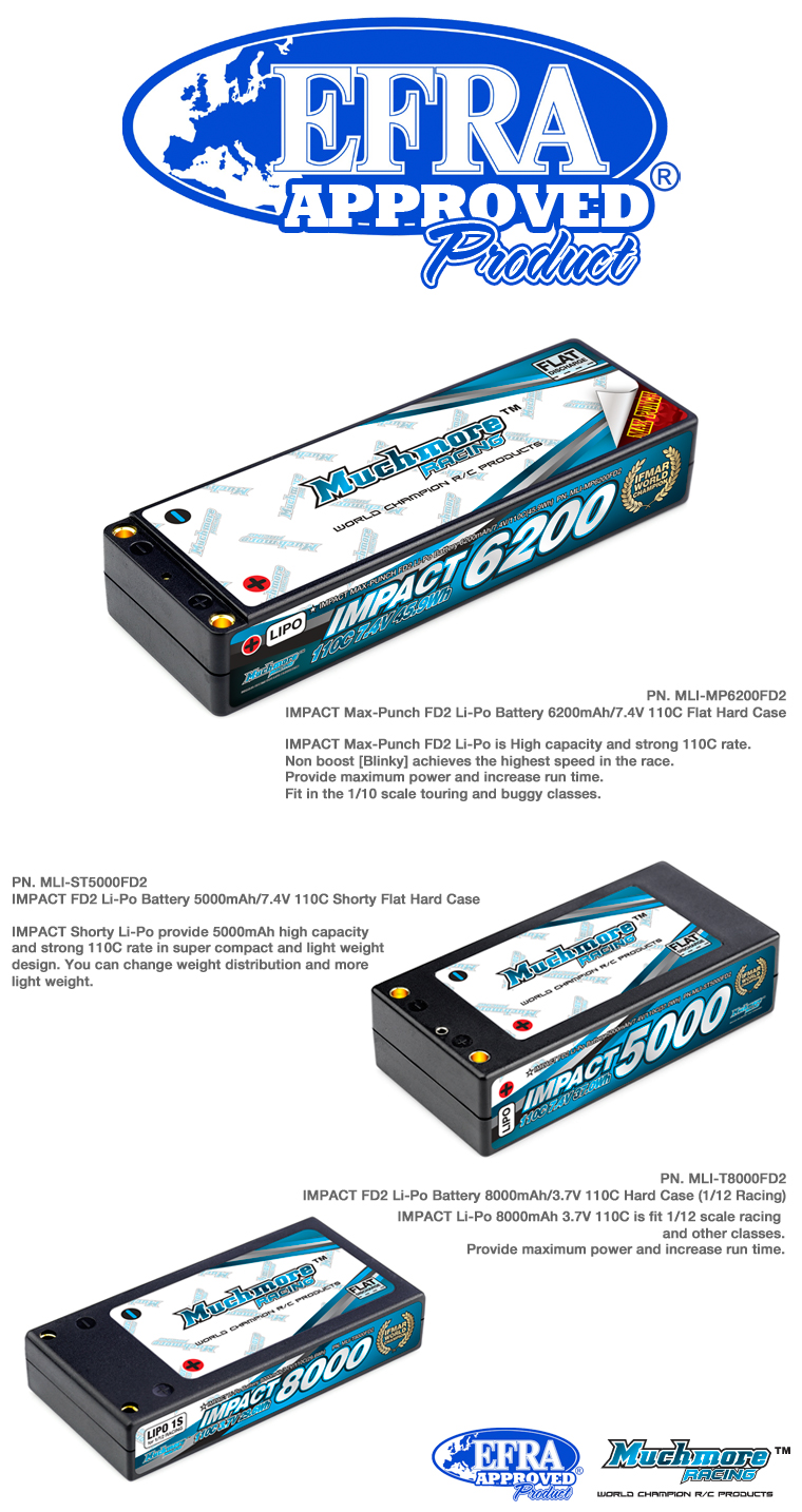 MuchmoreRacing EFRA_approved_battery.jpg